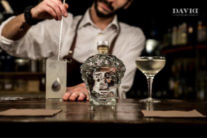 Gin David Bar